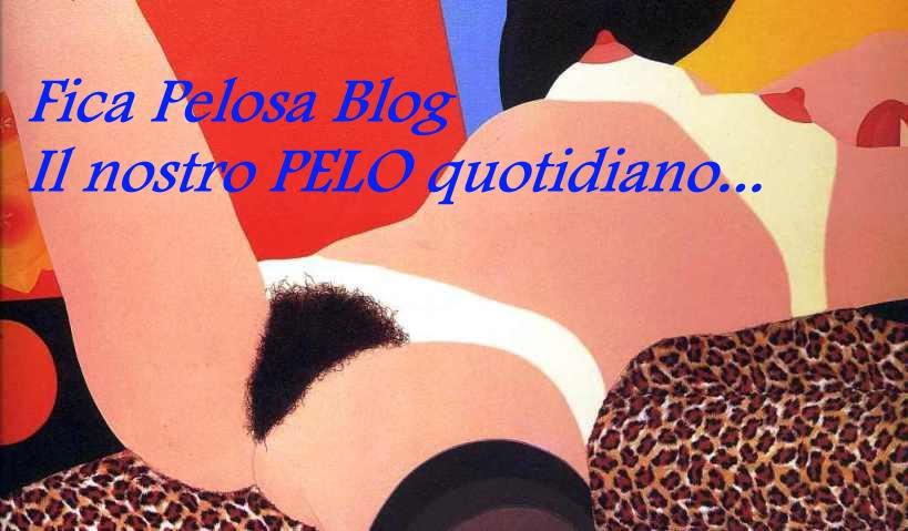Fica Pelosa Blog