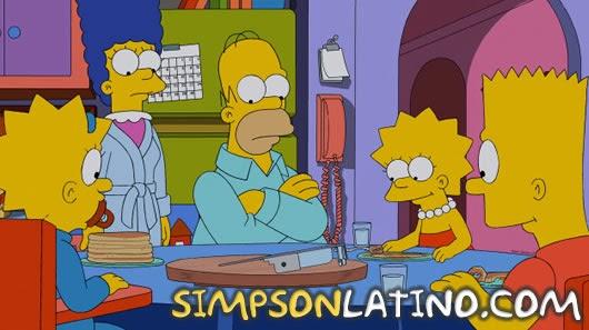 Los Simpson 25x11