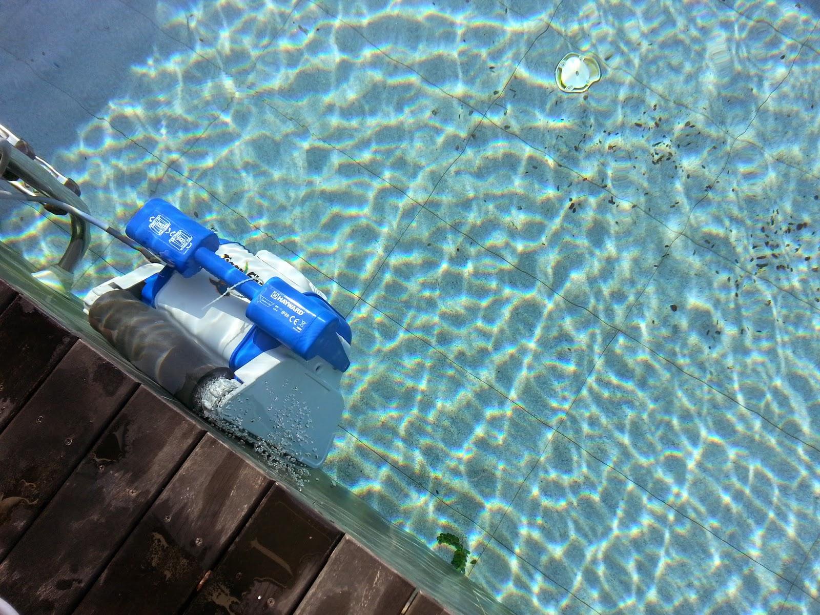 petunialee the tiger shark robot pool cleaner. Black Bedroom Furniture Sets. Home Design Ideas