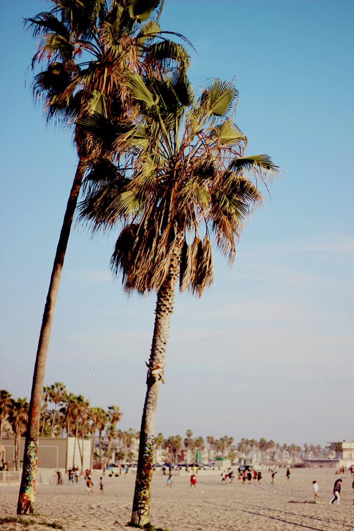 Venice Los Angeles