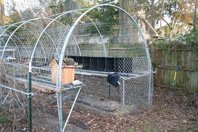 WHAT'S THE BEST CHICKEN WIRE AMP; FENCING? ::: COOP THOUGHTS BLOG