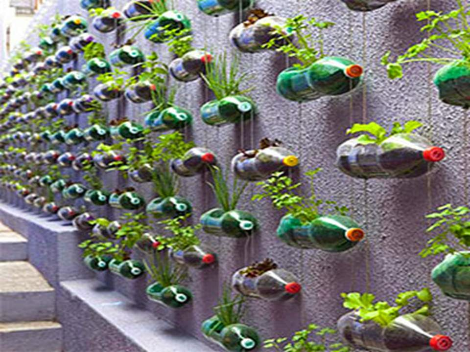 Plastic bottles recycling garden decor for Recycled decoration