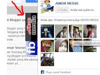 Cara Membuat Fans Page Facebook Auto Hide