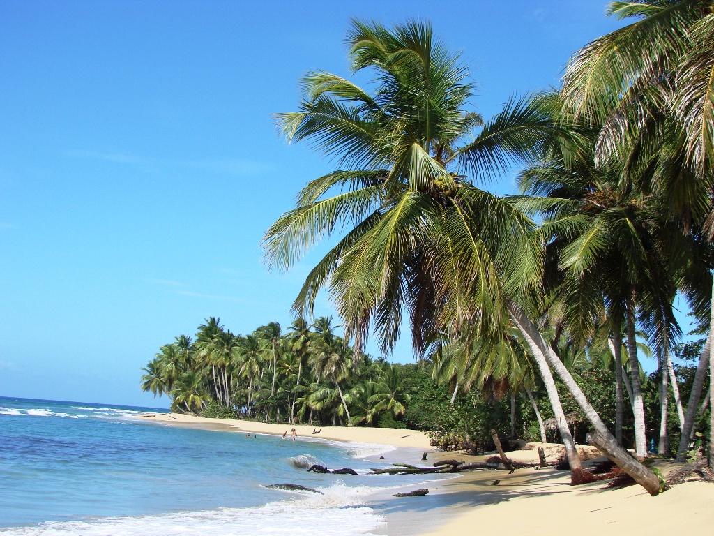 Ifa Villas Bavaro Resort And Spa Punta Cana Reviews