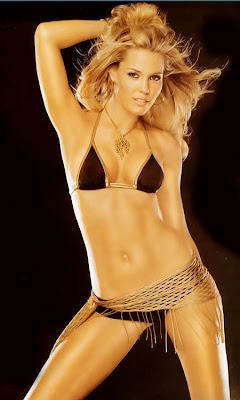 Leslie Bibb Hot
