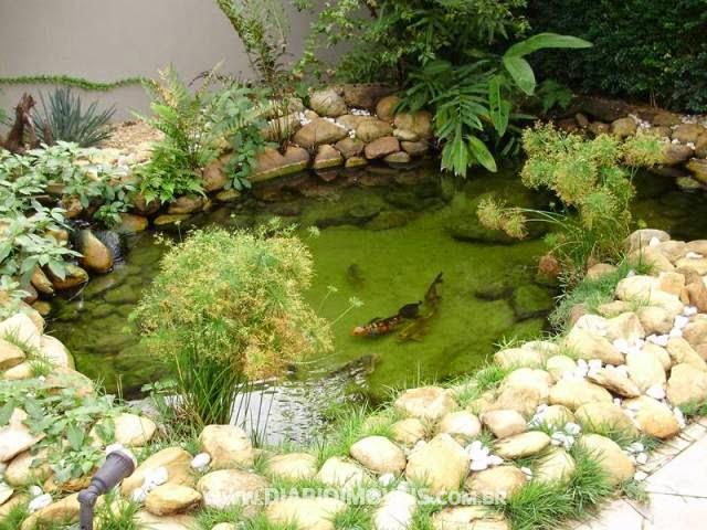 Casa constru o jardins plantas pergolados lagos for Lagos de jardin