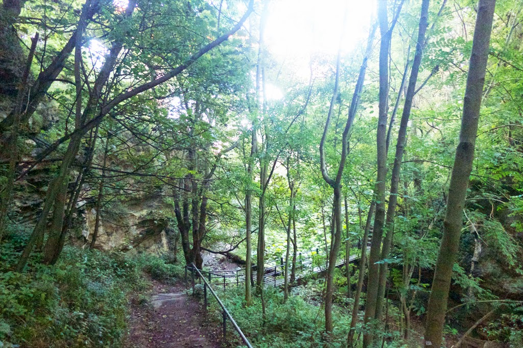 Hawthorn Dene, Seaham Coast Walk, County Durham