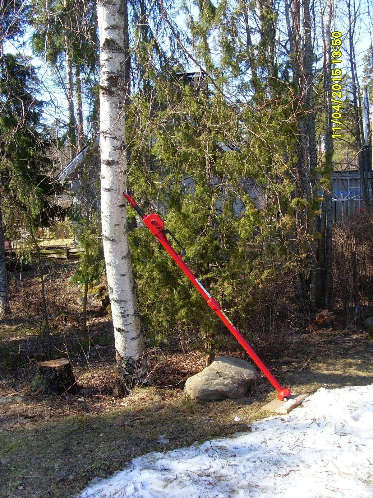 Pihakoivun kaato, pihapuiden kaadot Tampereen ja Pirkanmaan talousalueilla käteismaksulla