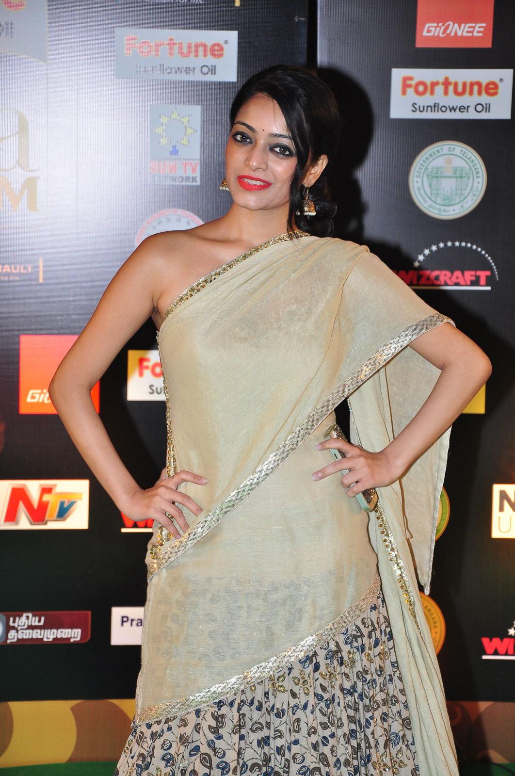 janani iyer glamorous in saree-HQ-Photo-4