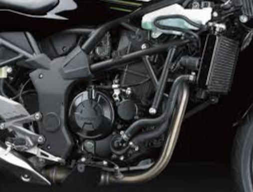 Kawasaki Ninja 250cc RR Mono