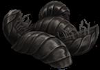 Onischi, il cibo preferito dagli Asticelli (o Bowtruckle)