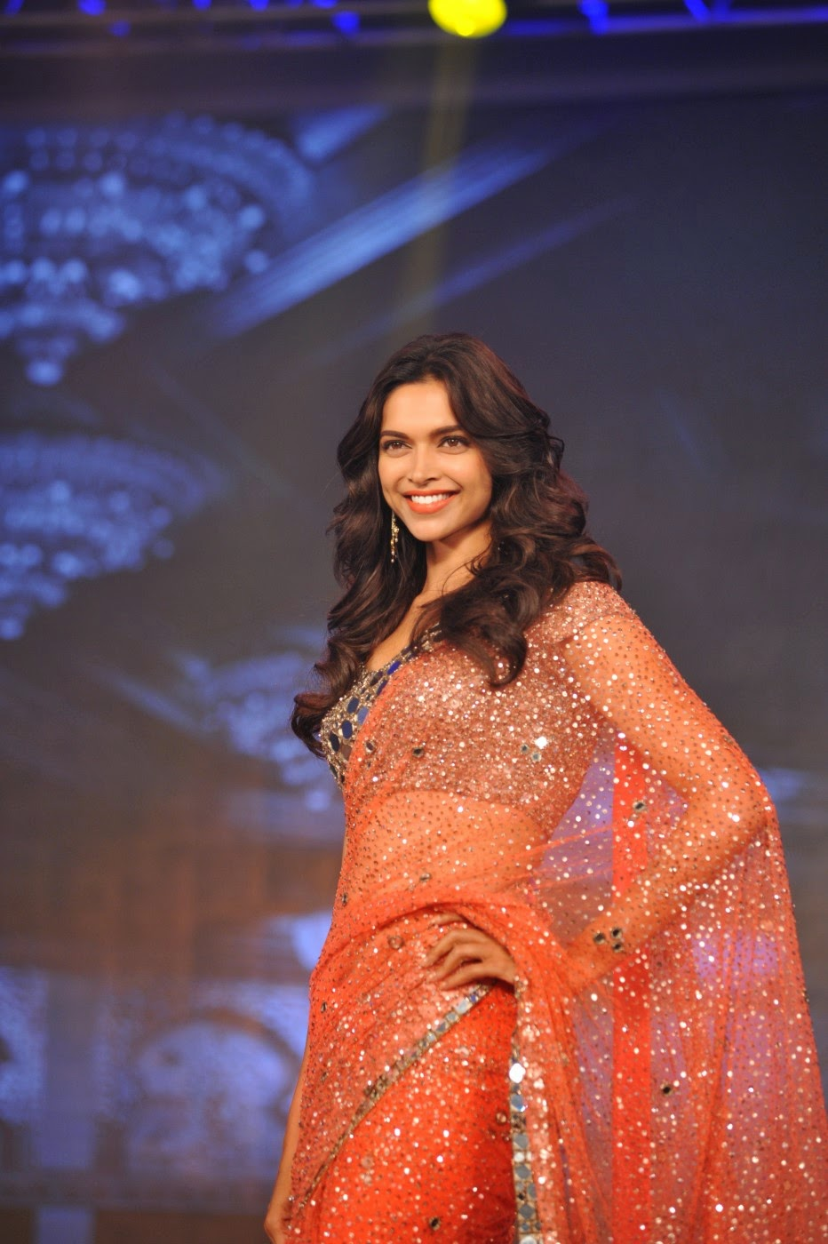 Bollywood Actress Saree Collections: Happy New Year ...
