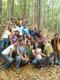Bohol Manmade Forest_04