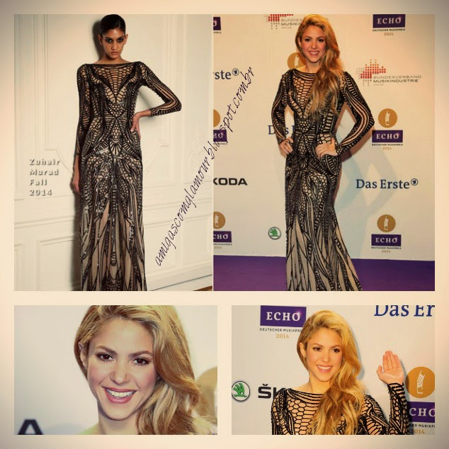 shakira echo awards