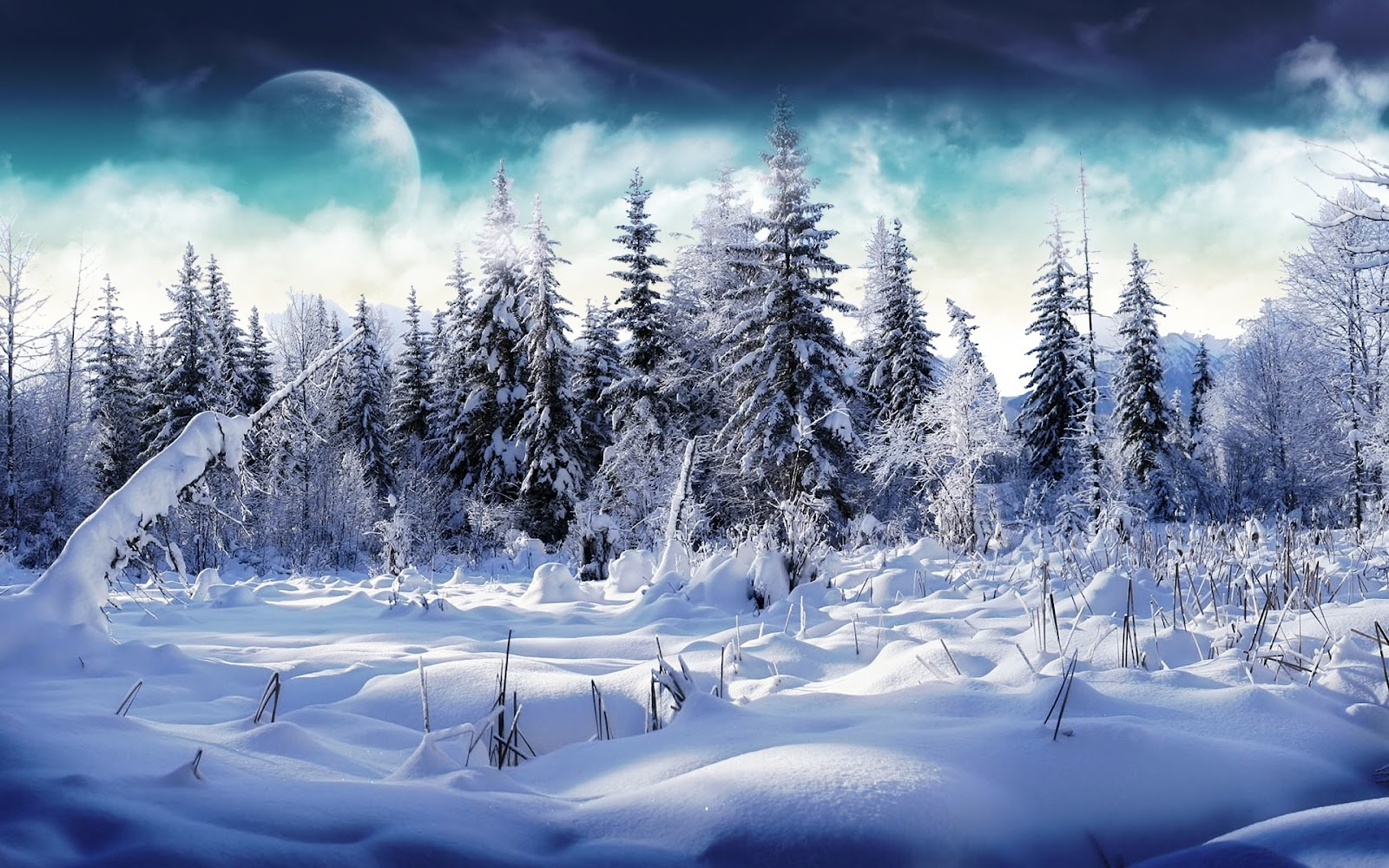 Top   Wallpaper Home Screen Winter - winter-wallpaper-33  Perfect Image Reference_46914.jpg