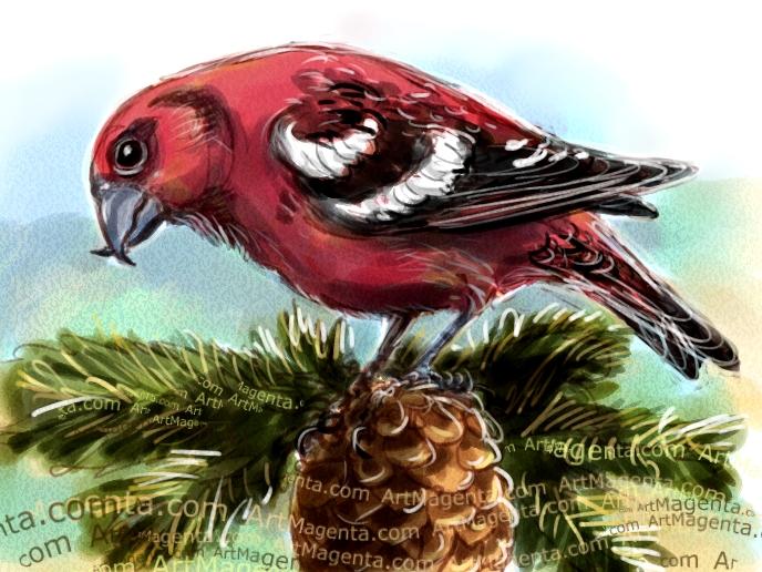 Bändelkorsnäbb är en fågelmålning från Artmagentas svenska galleri om fåglar