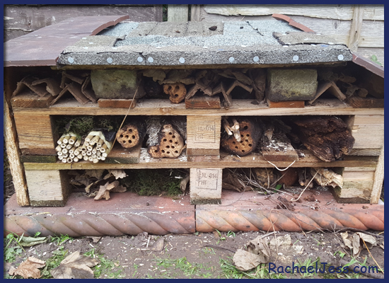 Our finished Bug House thanks to RSPB booklet