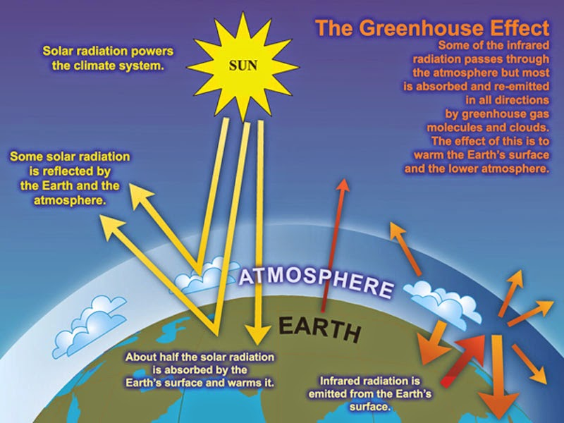 Climate Change and Global Warming Introduction