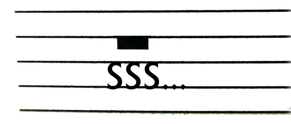 Sociedad Secreta del Silencio