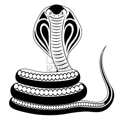 Naja    A Serpente Mais Venenosa Que Existe