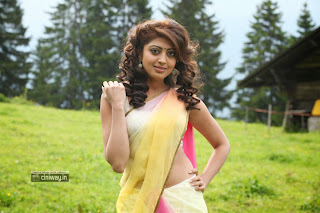 Pranitha-New-Saree-Photos