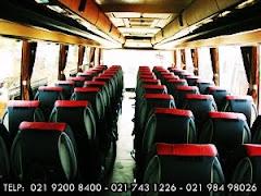 Interior BigBus 59 Seat