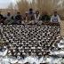 PAKISTÁN.- Príncipe saudí genera polémica tras matar a dos mil aves en peligro de extinción