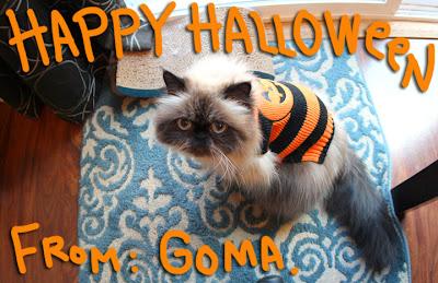 Goma-halloween-12_01