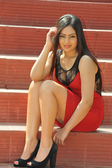 nikesha patel new photo gallery