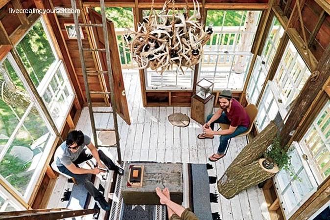 Arquitectura de casas casas del rbol tambi n para adultos for Arbol interior