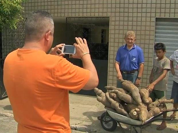 Agricultor colhe macaxeira gigante no Ceará