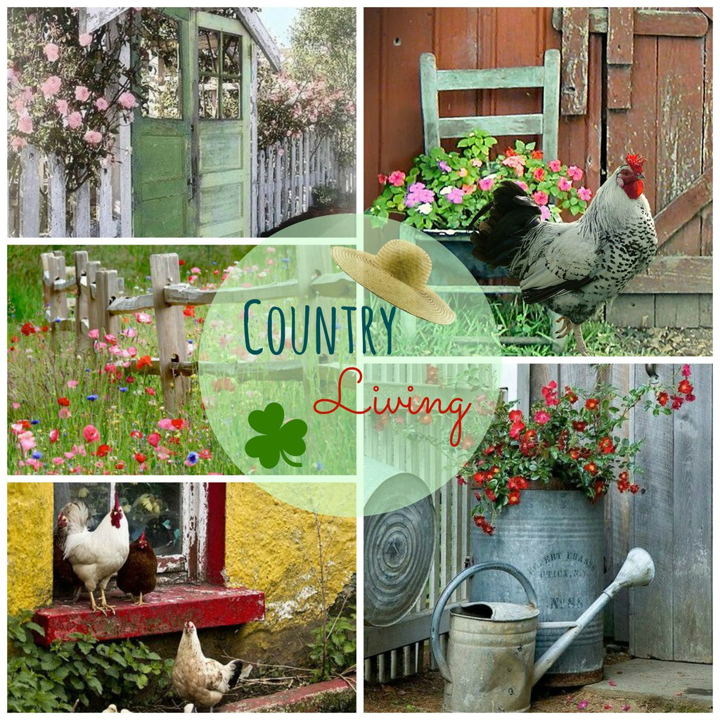 ♥ country living ♥