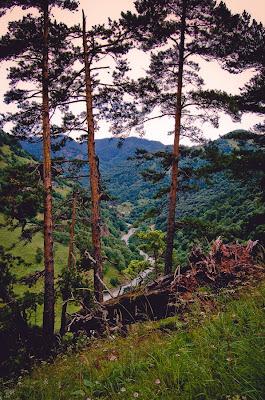 Вид на реку Аксаут