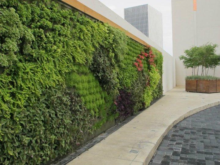 Vida verde muro verde andares for Muros verdes definicion