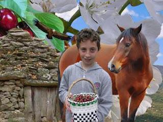 Excursiones escolares Valle del Jerte
