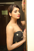 Parul Yadav latest glam pics-thumbnail-18