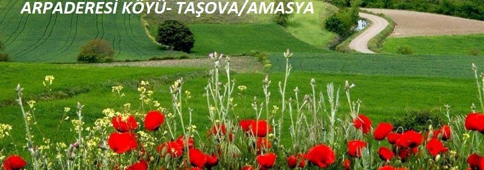 ARPADERESİ KÖYÜ- TAŞOVA-AMASYA
