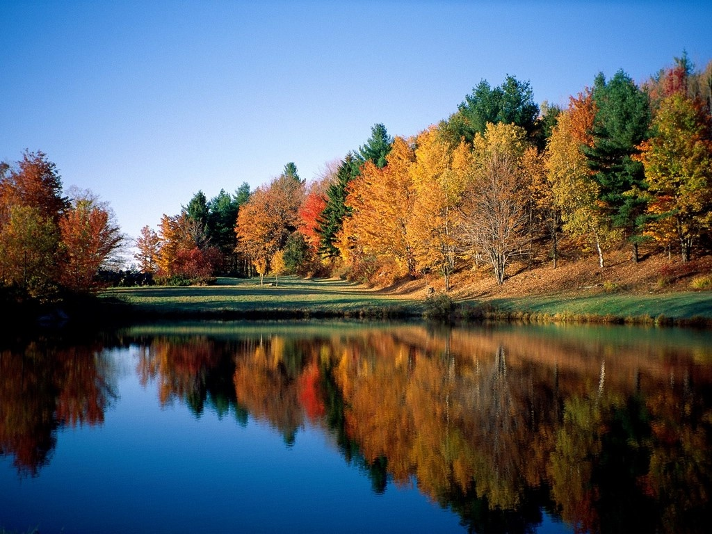 http://1.bp.blogspot.com/-jbULX7uIVWs/Tp4KU5ch1zI/AAAAAAAA4O4/GBL91MbhUBo/s1600/Autumn_and_Spring_Nature_Wallpaper.jpg