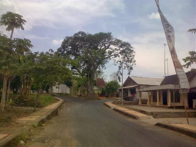 Akhir kisah: Pohon beringin ditengah-tengah pertigaan jalan raya.