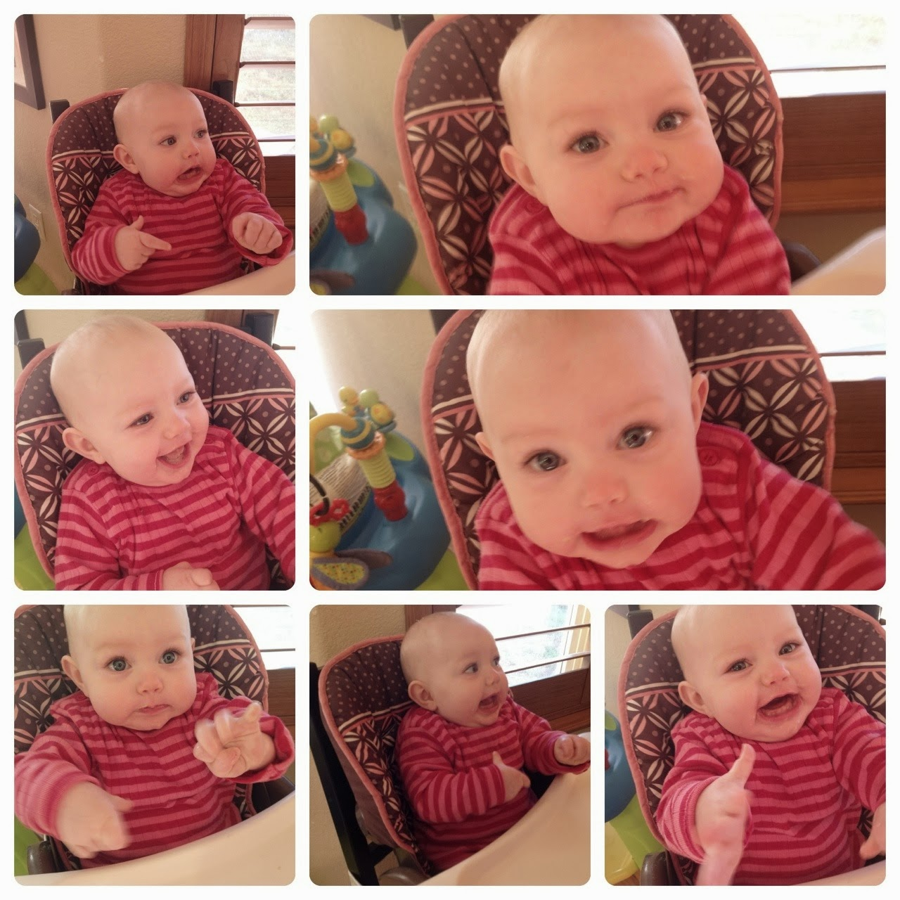 She Squeezes Her Fists And Growls At Us It Is Just So Cute Sorry There Are So Many Pictures I Just Wanted To Share All Her Expressions