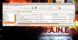 CAINE. Tamaño del fichero: 115,1 MB