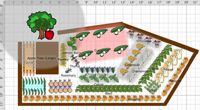 La Belle Dame De Merci La Belle 39 S Hobby Farm The Plan