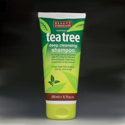 Tea tree deep cleansing shampoo
