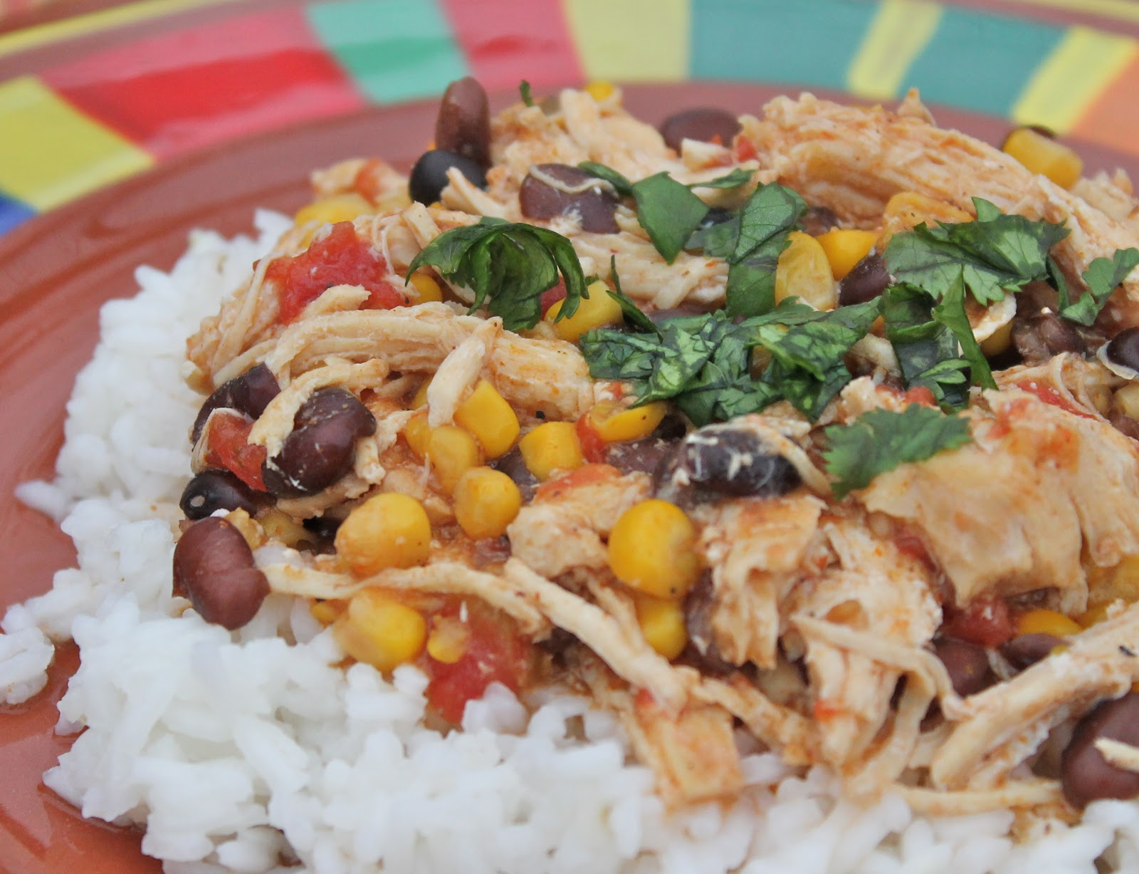 Slow Cooked Chicken Enchilada Chili Over Rice