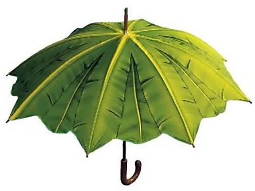 15 stylish umbrellas and unique umbrella designs part 5