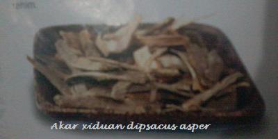 Resep Herbal Mioma di Rahim