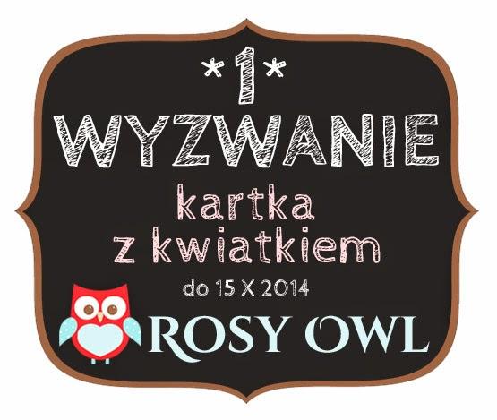 http://www.rosyowl.blogspot.com/2014/09/wyzwanie-1.html