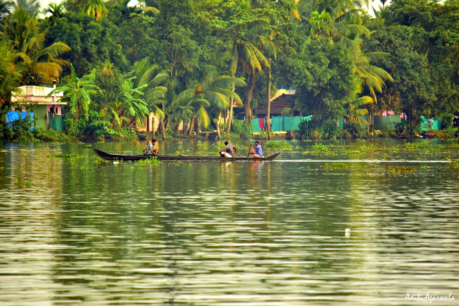 Fishermen rowing in the backwaters of Allepey, Kerala