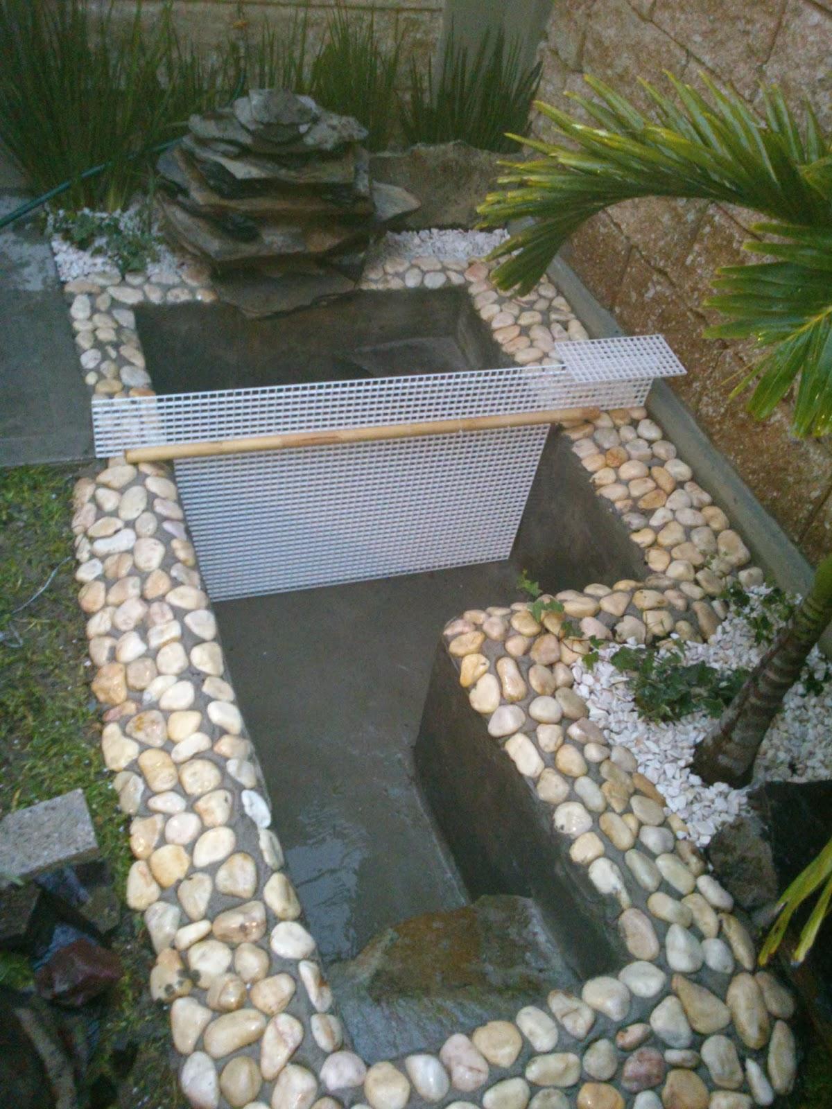 El estanque de mis tortugas diciembre 2013 for Estanque de tortugas
