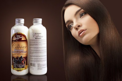 caviar shampoo pemanjang rambut